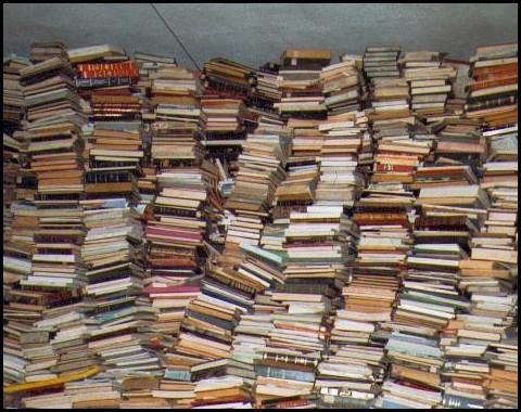 Gruppi di lettura biblioteca delfini ti consiglio un libro for Come costruire un mazzo del secondo piano