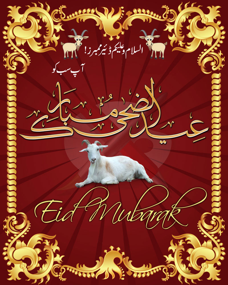 Eid Sms And Text Messages Greetings Pf146950 Eid Al Adha Mubarak Ho