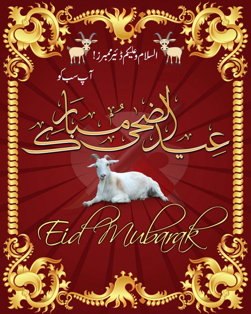 Eid sms and text messages greetings pf146950 eid al adha mubarak ho pak friends group member visit group httpgroupsgooglegroupkarachi 786 subscription httpgroupsgooglegroupkarachi 786subscribe m4hsunfo