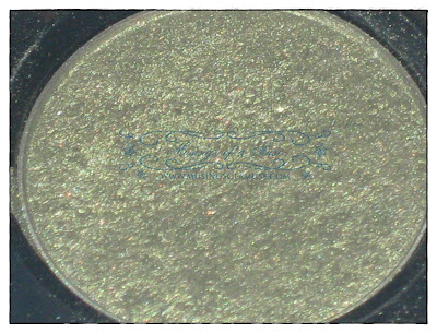 Urban+Decay+Eyeshadow+in+Mildew3