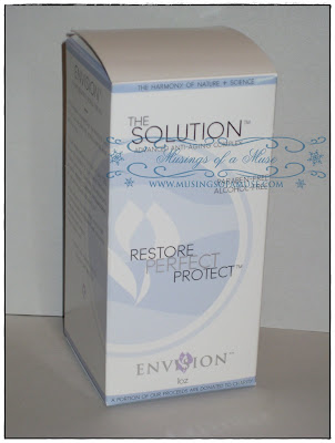 Envision+the+Solution+2