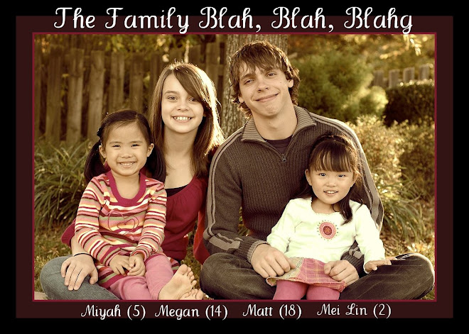 The Family Blah, Blah, Blahg