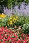 bunga termasuk tanaman