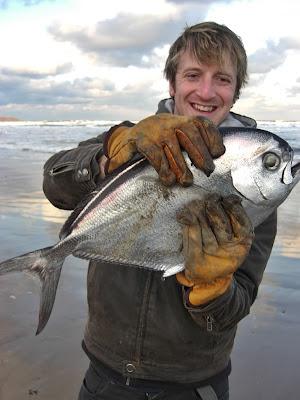 Un pesce castagna sulle spiagge dello yorkshire