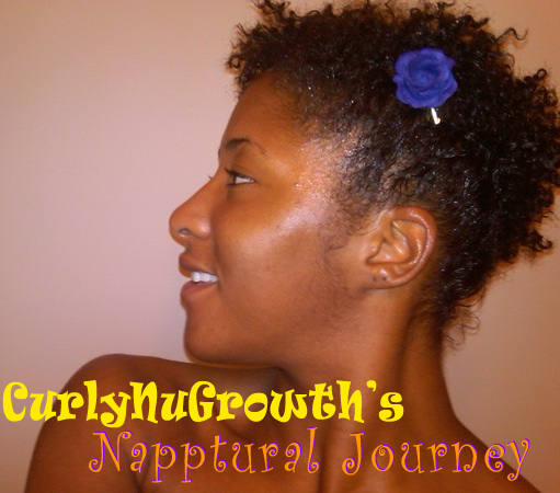 Controversy & Education of Natural Hair I am back from Paris, yay!