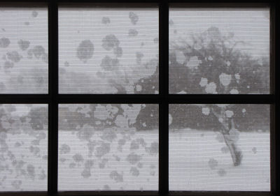 snow through window