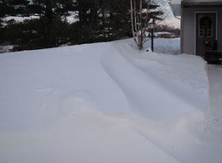 blizzard of 2011
