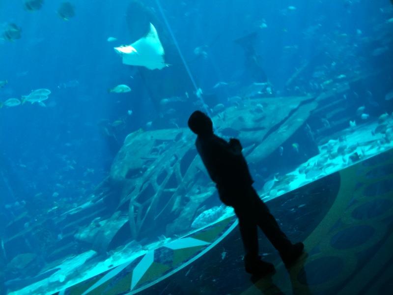 Write Myself A Happy Ending Atlantis Dubai What 39 S Missing