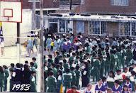 cooperdomo 1983