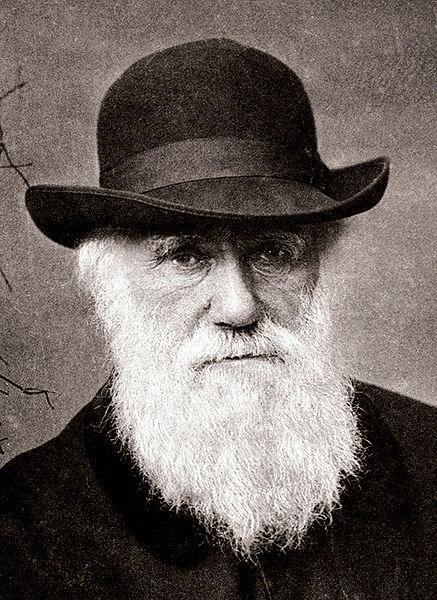 Charles Darwin, teoria: a evolução se dá por meio da seleção natural e sexual.