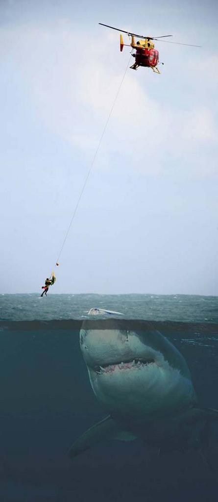 """""""Sou só a rede vazia diante dos olhos humanos na escuridão...Um peixe preso dentro do vento"""" Neruda"""
