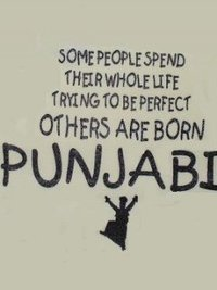 Spend Thier Whole Life Trying To Be Perfect Other Are Born Punjabi