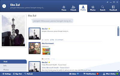 FishBowl - Desktop Based Facebook Application