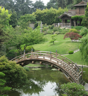 in the Japanese garden: