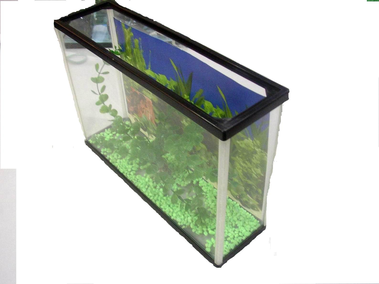 Megadtpwork for Square fish tank
