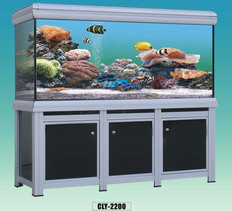 Megadtpwork aquariums and fish food for Aquarium fish food