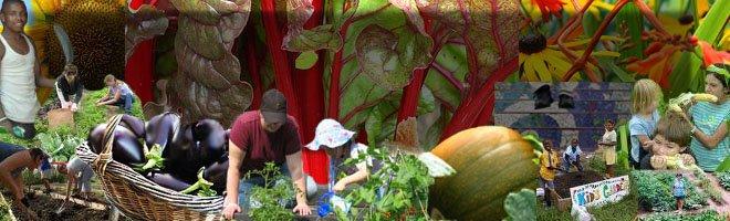 Columbus Community Gardening