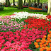 Northwest Flower & Garden Show