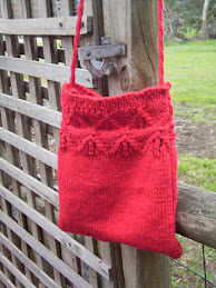 Lace Border Bag