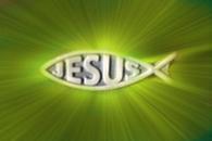 Gyönyörködjél az Úrban...