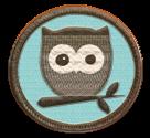 I'm a Brown Owl!