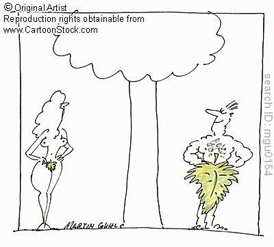 Size+matters - Fig leaf - Jokes and Humor