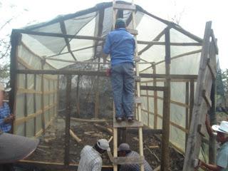 Produccion de arboles forestales consideraciones para el for Materiales para la construccion de un vivero