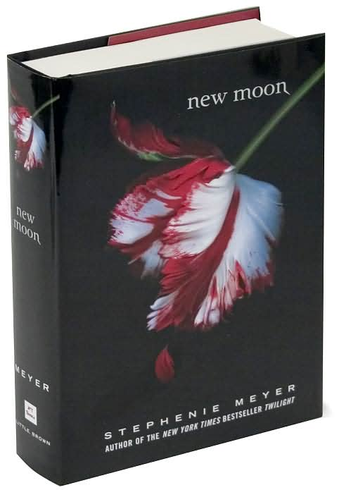 stephanie meyer s new moon summary characters Stephanie meyer  i'm  and you don't have to worry that the characters are way out there, because one  twilight's sequel is called new moon.