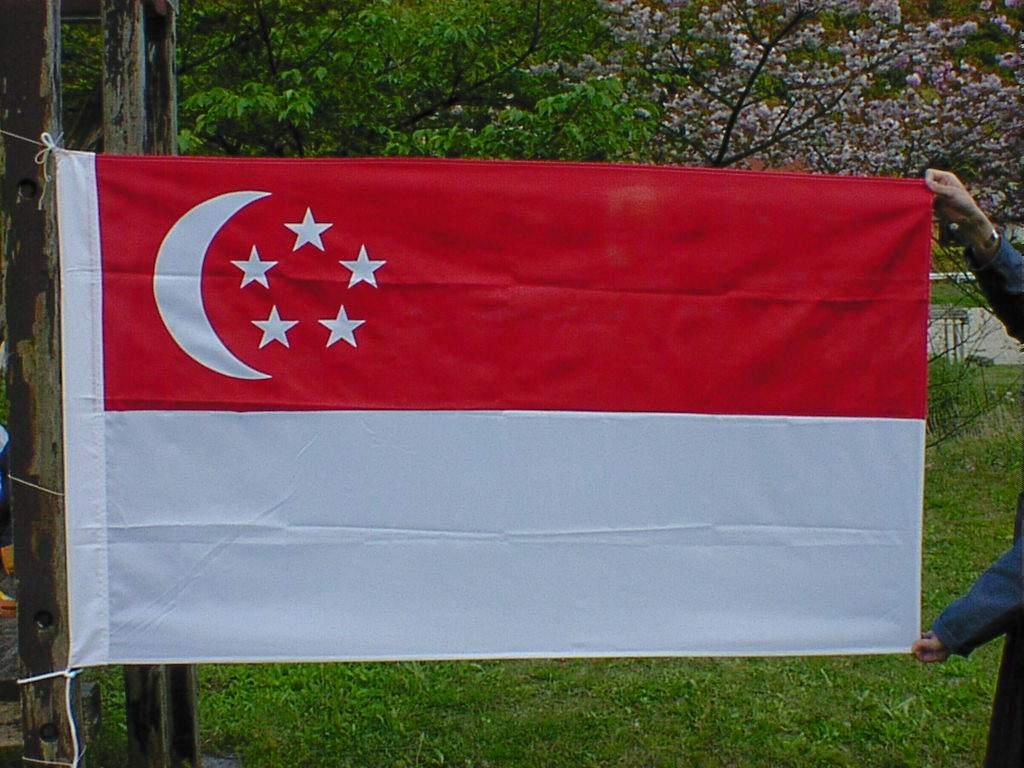 http://4.bp.blogspot.com/_Cc3gulUhlvs/TLPX54RH8dI/AAAAAAAACh4/6aWmBdJpSs0/s1600/singapore-flag.jpg