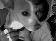 My Dog TIGGER!