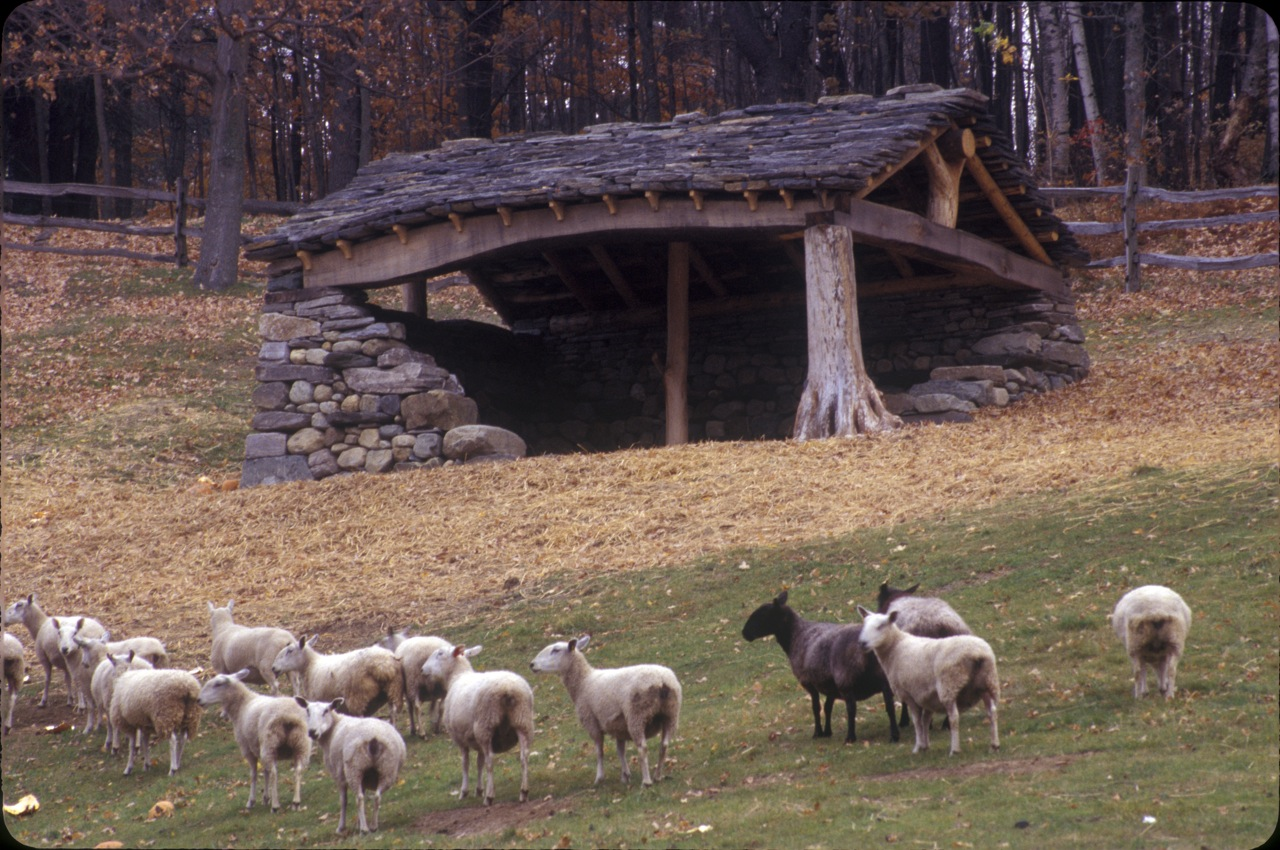 Sheep Shed In The Company Of Stone