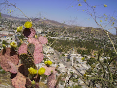 El Carmen en el mes de abril desde las flores del Cerro.