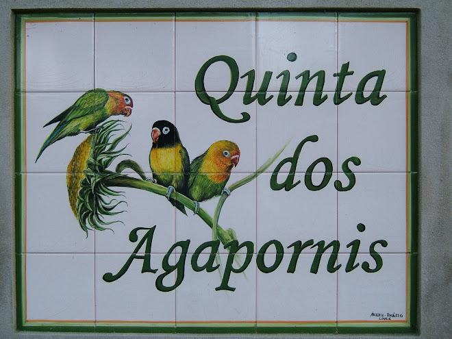 Quinta dos Agapornis