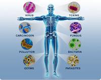 Bağışıklık Sistemi, Mikrop, Virüs, Bakteri, Toksin, Mantar