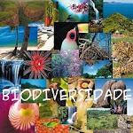 Ano Internacional da Biodiversidade