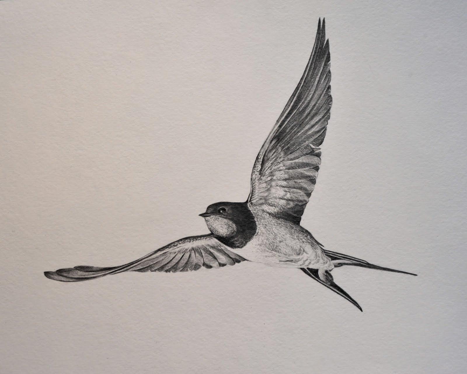 Tea Andor Cake Birds