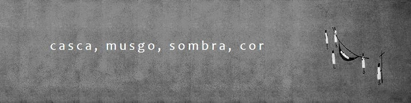 CASCA, MUSGO, SOMBRA E COR