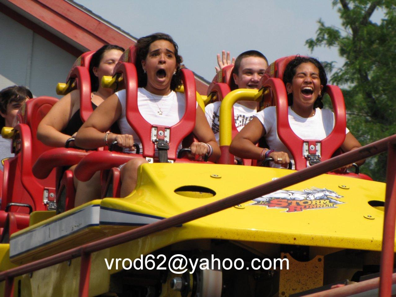 Essay On Fear Of Rollercoasters