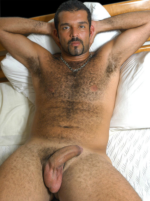 Hot Hairy Bears Get Cummed On