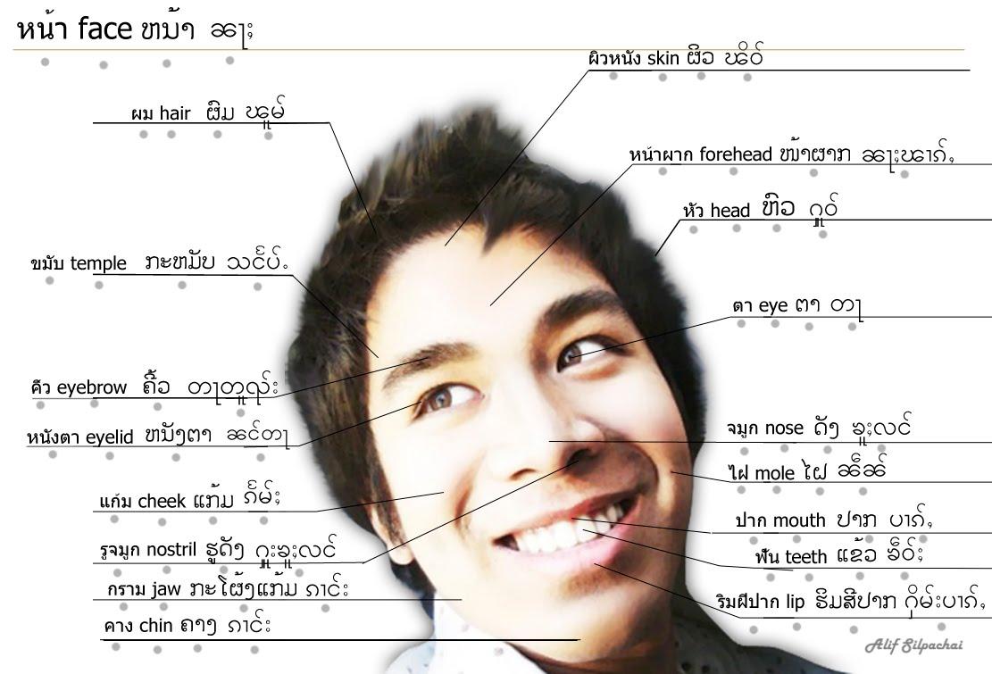 tai languages with alif silpachai four tai language