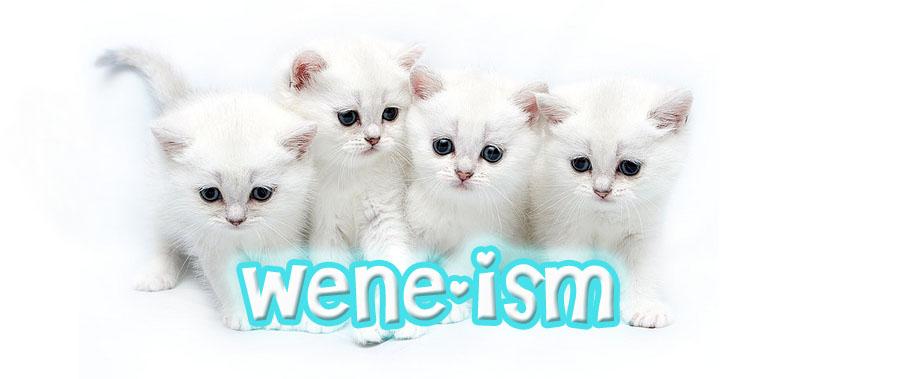 ~Wene-ism~
