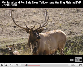 Montana Land For Sale YouTube Video