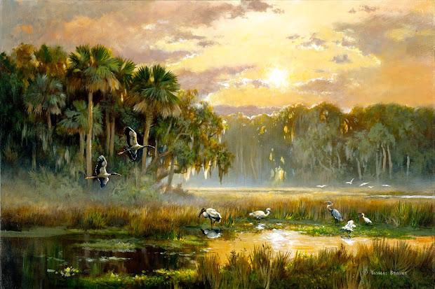 florida land report saunders