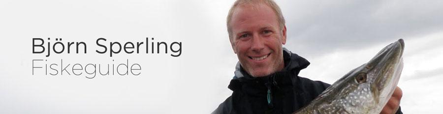 Sperlings Fiske - Fiske efter Gädda, Lax, Torsk och Öring