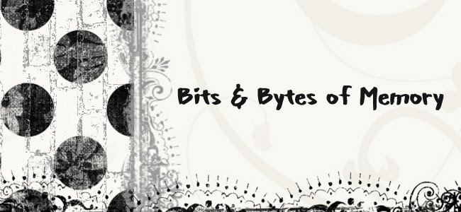 Bits & Bytes of Memory