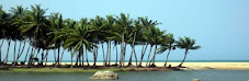 Arugam Bay, Eastern Coast, Sri Lanka