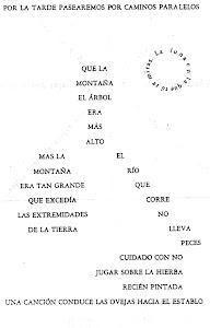 CAMINO PARALELO - VICENTE HUIDOBRO