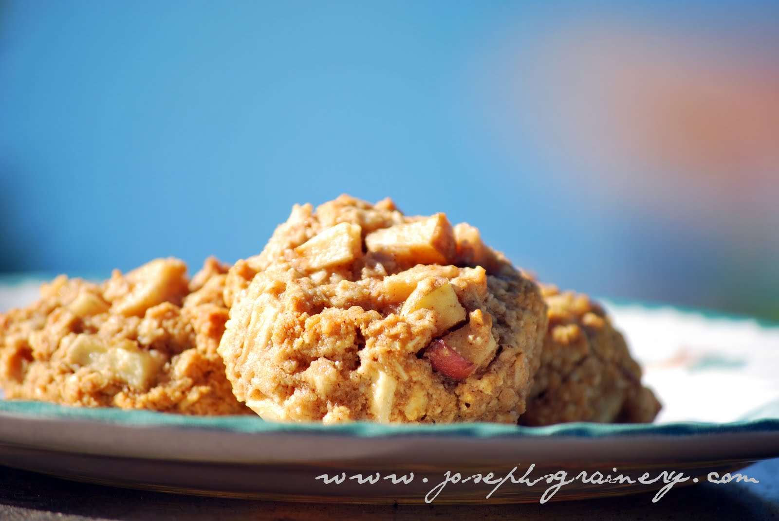 Stick them in the oven and enjoy a tasty and halfway healthy treat in ...