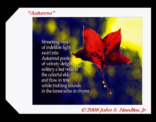2_ART&Words_ Autunno1