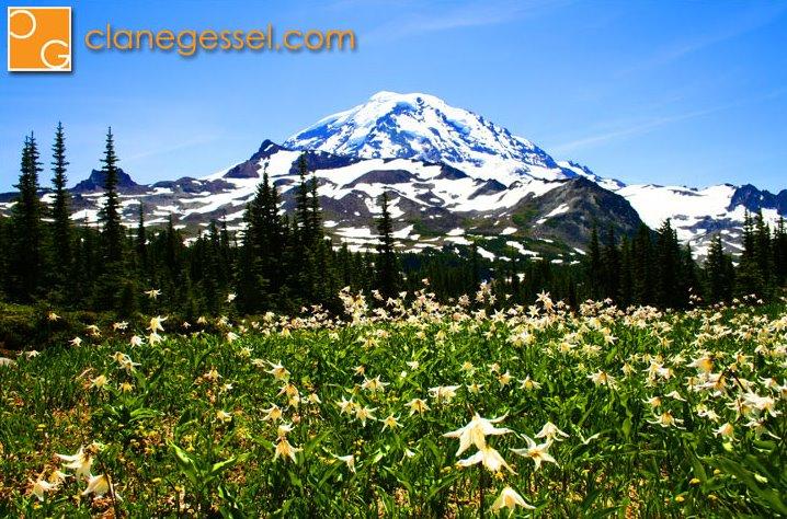 Mount Rainier National park Wonderland Trail glacier mowich lake spray park